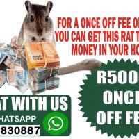 {{ }}+27782830887Money Spell Magic Ring Wallet And Rats In Uxbridge Town in Massachusetts